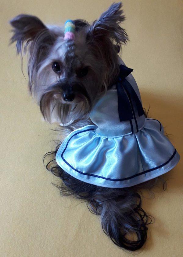 голубое платье для собак маленьких пород