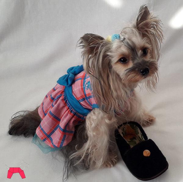 игрушка для собак тапочки для дрессировки