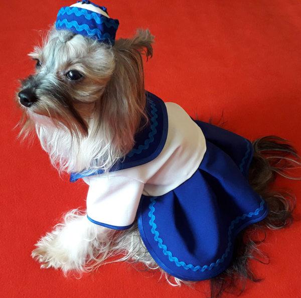 костюм морячки для собак маленьких пород