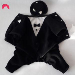 костюм жениха для собак маленьких пород