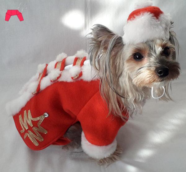 костюм Деда Мороза для собаки