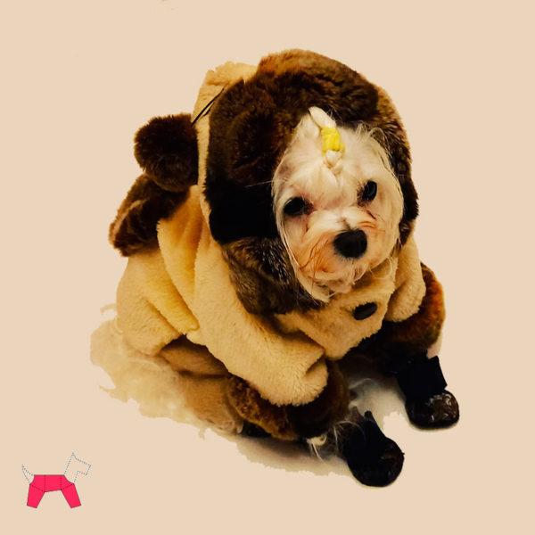 Шуба из натурального меха для собаки