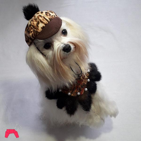 Праздничный костюм для собаки «Тигровая жемчужинка»