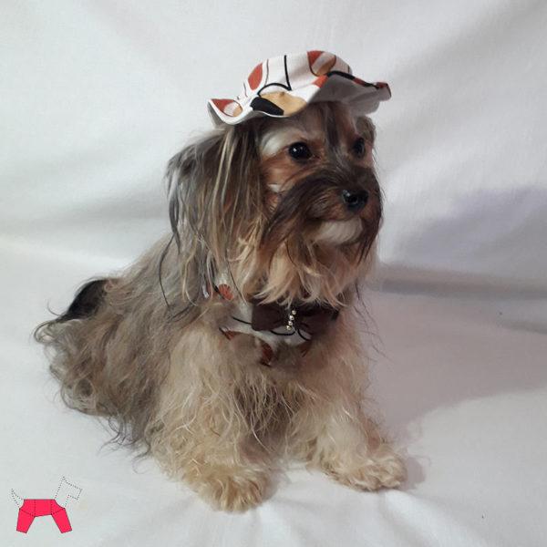 Праздничный костюм для собаки «Фантазия»